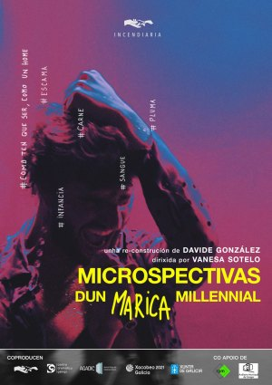 Microspectivas dun Marica Millennial